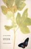 The Garden Spring Foundation: Volume 1: An Oak Spring Sylva