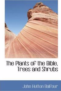 Plants of the Bible, Trees and Shrubs