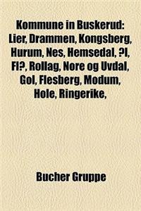 Kommune in Buskerud: Lier, Drammen, Kongsberg, Hurum, Nes, Hemsedal, Al, Fla, Rollag, Nore Og Uvdal, Gol, Flesberg, Modum, Hole, Ringerike,