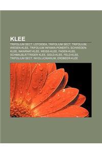 Klee: Trifolium Sect. Lotoidea, Trifolium Sect. Trifolium, Wiesen-Klee, Trifolium Infamia-Ponertii, Schweden-Klee, Inkarnat-