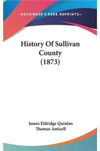 History Of Sullivan County (1873)