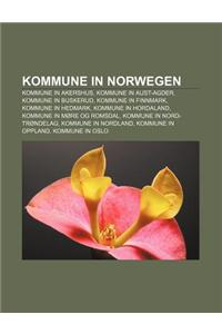 Kommune in Norwegen: Kommune in Akershus, Kommune in Aust-Agder, Kommune in Buskerud, Kommune in Finnmark, Kommune in Hedmark