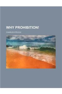 Why Prohibition!