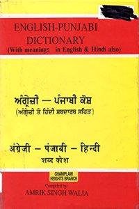 English-Hindi-Punjabi Dictionary