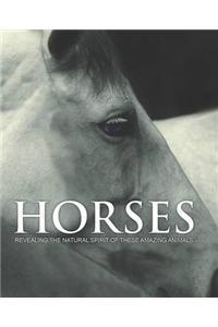Spirit of Horses