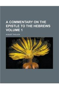 A Commentary on the Epistle to the Hebrews Volume 1