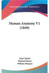 Human Anatomy V1 (1849)