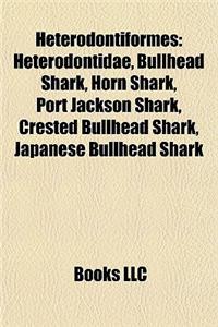 Heterodontiformes: Heterodontidae, Bullhead Shark, Horn Shark, Port Jackson Shark, Crested Bullhead Shark, Japanese Bullhead Shark