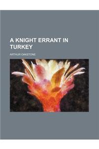 A Knight Errant in Turkey
