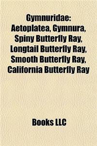 Gymnuridae: Aetoplatea, Gymnura, Spiny Butterfly Ray, Longtail Butterfly Ray, Smooth Butterfly Ray, California Butterfly Ray