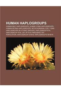 Human Haplogroups: Human Mhc Haplogroups, Human Y-DNA Haplogroups, Human Mtdna Haplogroups, Mitochondrial Eve