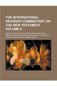 The International Revision Commentary on the New Testament Volume 6