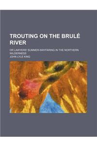 Trouting on the Brule River; Or Lawyers' Summer-Wayfaring in the Northern Wilderness