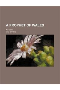A Prophet of Wales; A Story