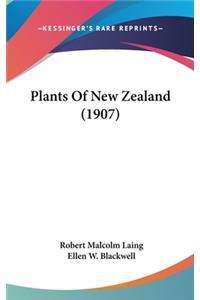 Plants of New Zealand (1907)