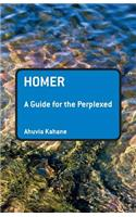 Homer: A Guide for the Perplexed