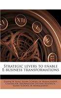 Strategic Levers to Enable E-Business Transformations