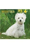 West Highland White Terriers 2020 Square Foil