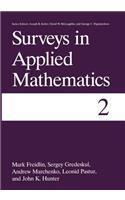 Surveys in Applied Mathematics: Volume 2