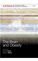Brain and Obesity