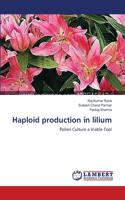Haploid Production in Lilium