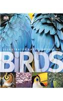 Illustrated Encyclopedia of Birds