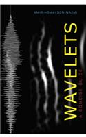 Wavelets: A Concise Guide