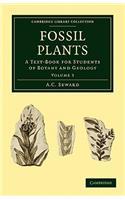 Fossil Plants - Volume 3